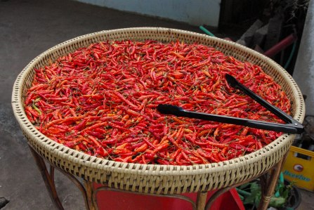 chillies, chillies, chillies