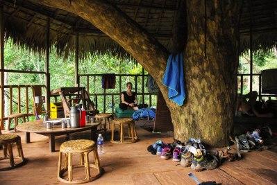 comfy treehouse