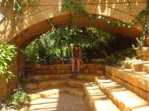At Kirstenbosch Botanical Garden