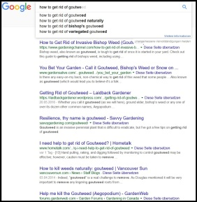 "google results for ""goutweed"" - stop hating it! Harvest and love it!"