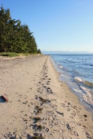 Smelt Bay's sandy beach